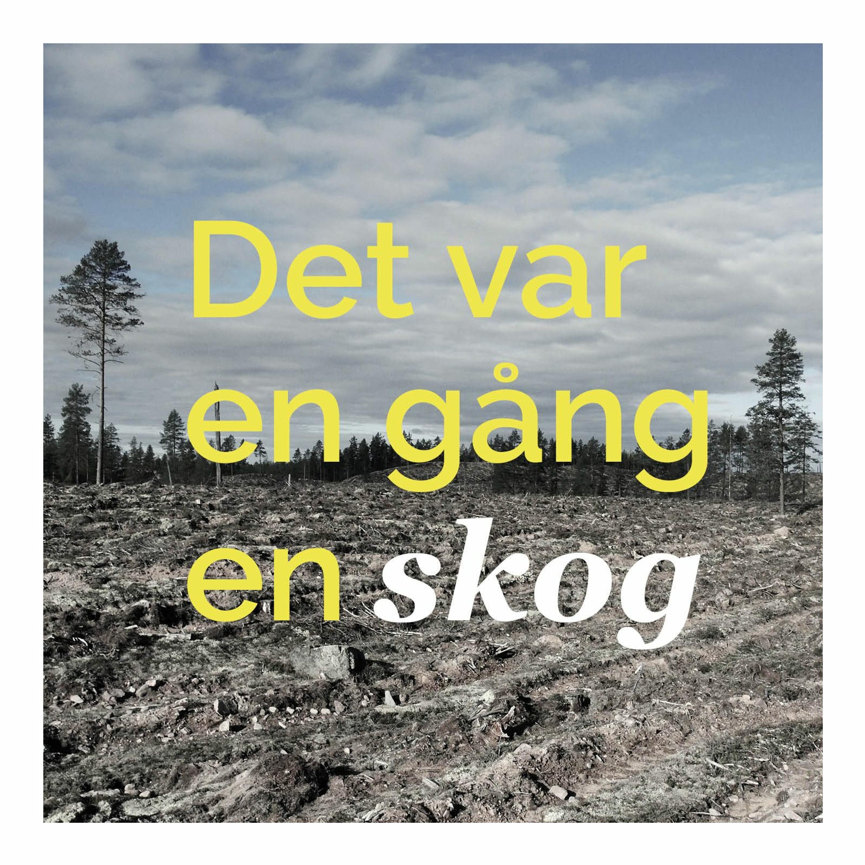 1. Vi ser inte skogen för alla träden
