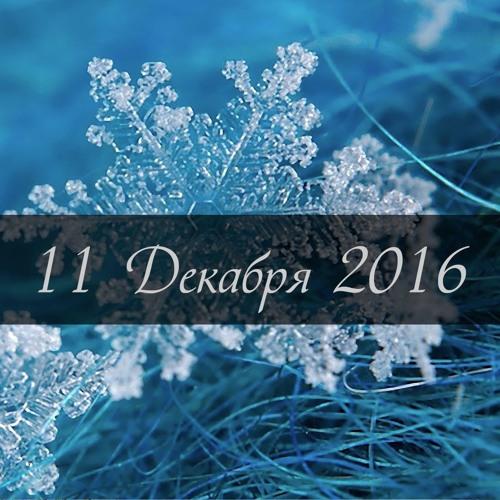 11 Декабря 2016