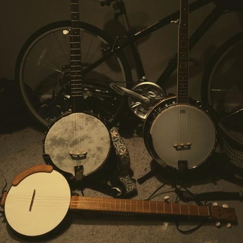 Banjo Collection 2016