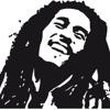 Hip Hop Reggae(VENDIDA)