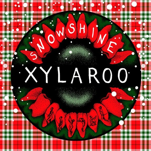 'Snowshine' (Live on Bestival FM)- Xylaroo