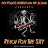 Reach For The Sky (Social Distortion cover)