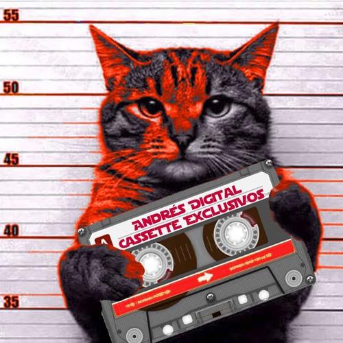 Cassette Exclusivos