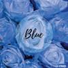 Artis - Blue