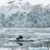 Elegy for the Arctic - Ludovico Einaudi - Pianist, Saundra Schiller