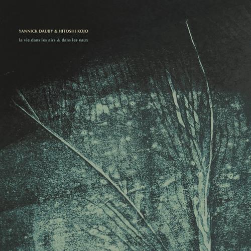 Yannick Dauby & Hitoshi Kojo - La Vie dans les Airs & dans les Eaux (excerpts)