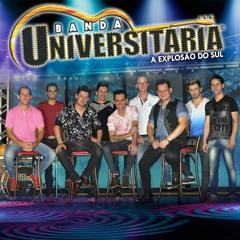 boteco universitario>>>Banda Universitaria,A explosão do sul