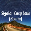 Sigala - Easy Love (Remix SlyBuck)