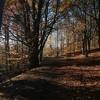 Autumn Journal - Canto XI