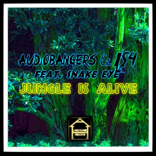 Audiobangers is4 feat snake eye jungle is alive by for Acid house records