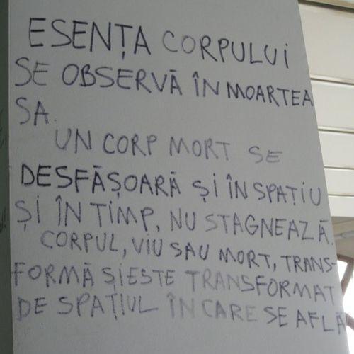 10. Occupy