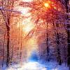 Return To Frozen Oak