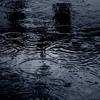 The Dance of the Rain