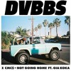 DVBBS - Not Going Home (Roze Remix)