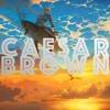 Nick Jonas - Champagne Problems (Caesar Brown Remix)