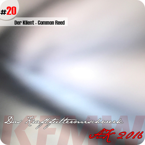 2016 #20: Der Klient - Common Reed