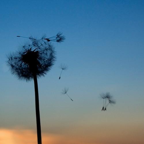 Shoebox Memories - wind ensemble