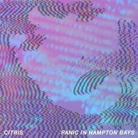 Citris - Little Scars