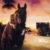 Red Hot Chili Peppers - Dani California (Pic Schmitz Remix)