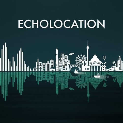 Echolocation: Oslo (excerpt)