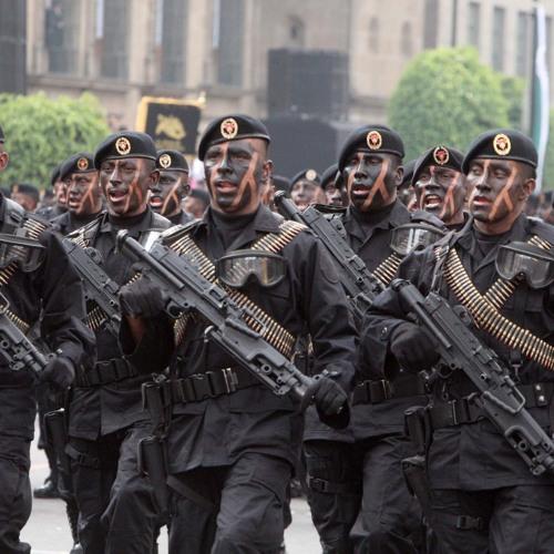 Fuerzas Armadas, para preservar soberanía y no para tareas de policías: Peña
