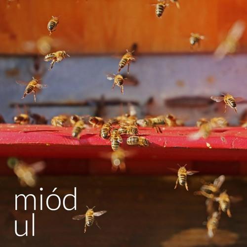 Miód - Ul