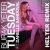 Burak Yeter feat. Danelle Sandoval - Tuesday (Helter Remix)