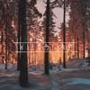 Jeremy Zucker - Icarus (Wild Line Remix)