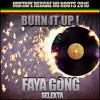 Selekta Faya Gong - Burn It Up (2016)