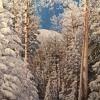 Winter Wonderland '16