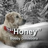 Honey - Bobby Goldsboro - cover by Wim