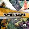 Linkin Park Feat. Jay - Z - Numb Encore (Housecrusherzzz Edit)