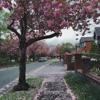 Eric Clapton-Autumn Leaves (cover)