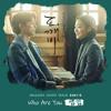 SAM KIM - Who Are You (Goblin OST Part. 6) mp3