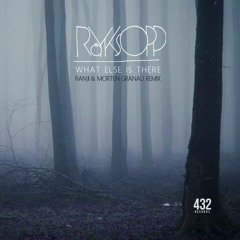 Röyksopp - What Else Is There (Ranji & Morten Granau Remix) Free download