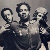 Project Roots(Digable Planets)