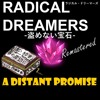 20-Radical Dreamers - A Distant Promise (On the Beach of Dreams)