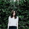 Wild Horses (Bishop Briggs) U4EM Instrumental Trap Remix