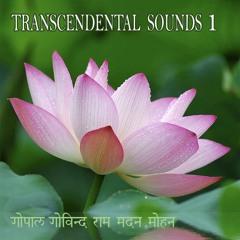 Transcendental Sounds 1