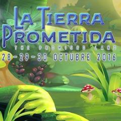 Psygroo @ La Tierra Prometida (Mexico)