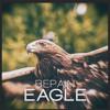 BEPAIN - Eagle (Original Mix)[FREE DOWNLOAD]