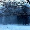 The Love I Can't Send - Seon - Ost. Winter Sonata - Cover [Lili]