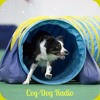 Cog Dog Radio: Puppies Part Two
