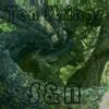 Dimitri Wave Album Cover