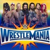 I Can't Wait For Wrestlemania 33 (Full Song Coming Soon)