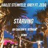 Hailee Steinfeld - Starving, Grey ft. Zedd (Jay Carlson x Delirium Remix)[BUY = FREE DL]