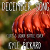 December Song (Peter Hollens Cover)