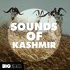 Sounds Of Kashmir [I'm the DJ Mobile App]