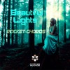 Rocket Chords - Beautiful Lights (Original Mix)