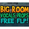 FREE BIG ROOM VOCALS DROPS! (FLP + SAMPLES)